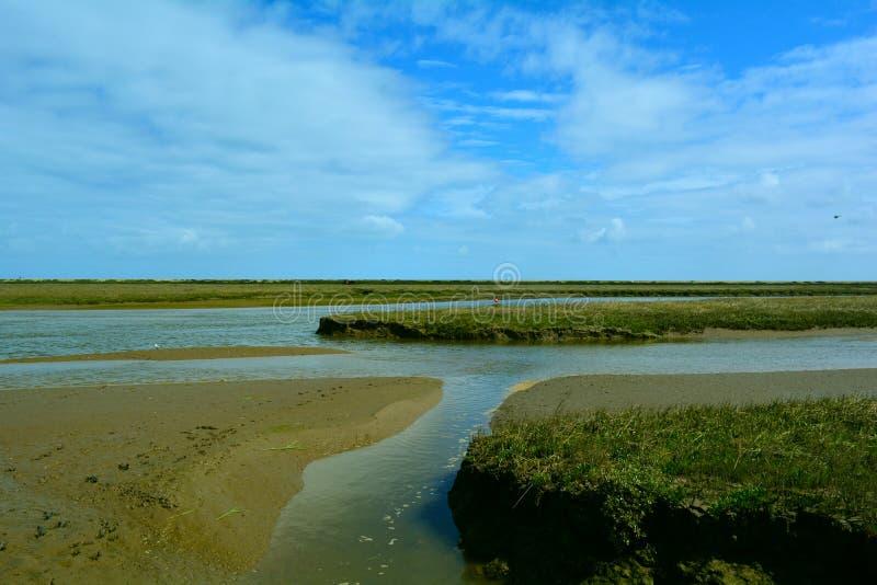 Corriente/río costeros largos cerca de la playa, punto de Blakeney, Norfolk, Reino Unido fotografía de archivo