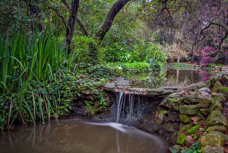 Corriente y cascada pacíficas en primavera fotos de archivo libres de regalías