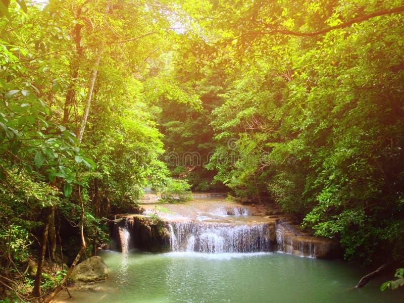 Corrientes, cascadas y bosques en luz caliente imagenes de archivo