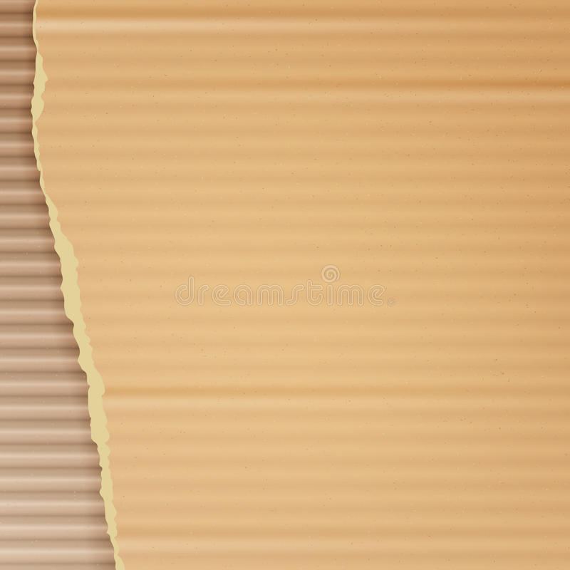 Corrugated Cardboard Vector Background. Realistic Texture Ripped Cardboard Wallpaper With Torn Edges. Logistics Service, Warehouse. Corrugated Cardboard Vector vector illustration