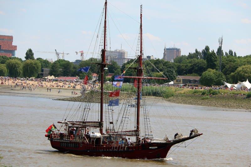 Corsa alta della nave 2016, Anversa Belgio fotografie stock libere da diritti