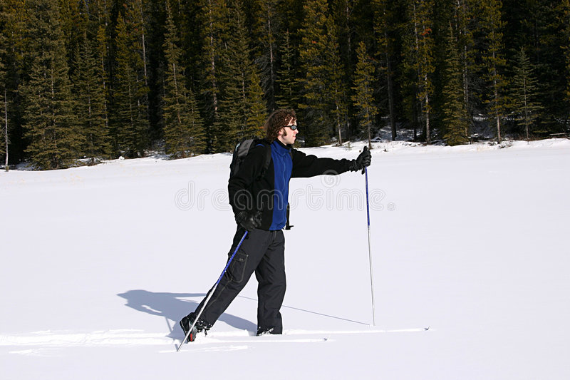 Corsa con gli sci del paese trasversale nelle montagne immagini stock