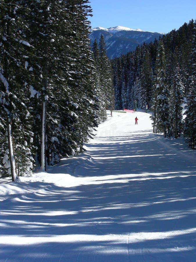 Corsa con gli sci dell'uomo rosso fotografia stock