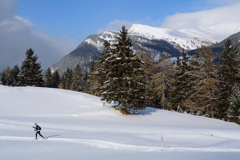Corsa con gli sci nordica, Nauders, Austria fotografia stock libera da diritti