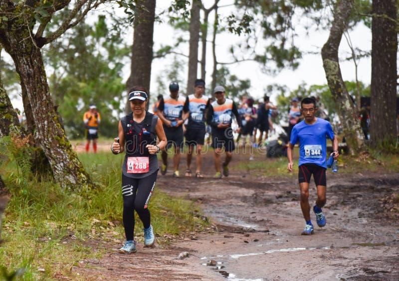 Corsa corrente della gente adatta di maratona fotografie stock libere da diritti
