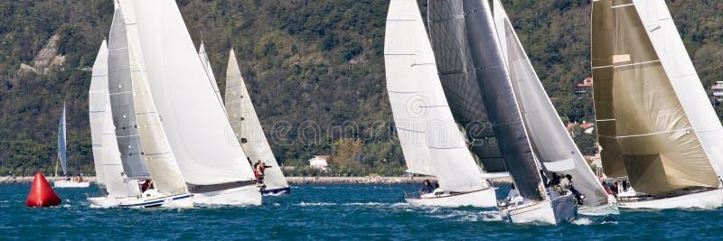Corsa della barca a vela immagine stock