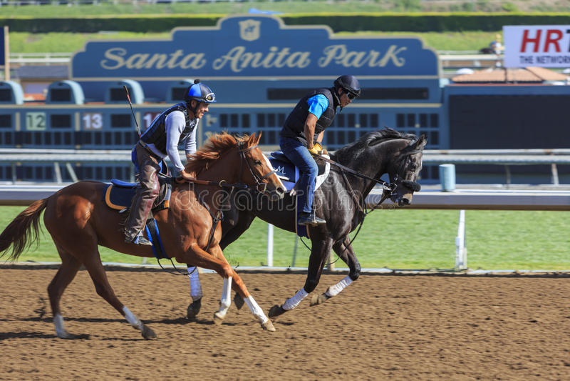 Corsa di cavalli in Santa Anita Park immagini stock libere da diritti