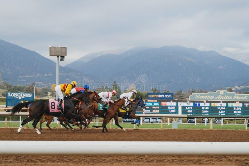 Corsa di cavalli vicino all'arrivo fotografia stock libera da diritti