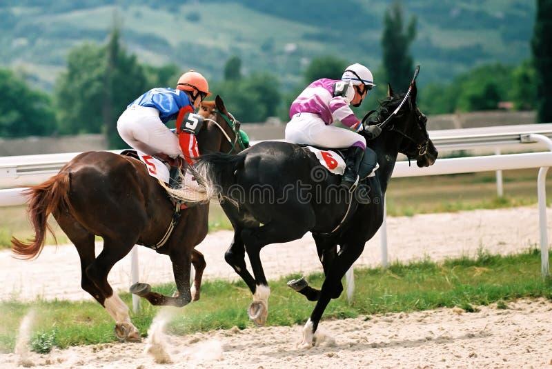 Corsa di cavallo. immagine stock