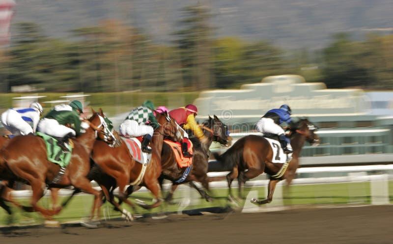Corsa di cavallo astratta della sfuocatura di movimento immagine stock libera da diritti