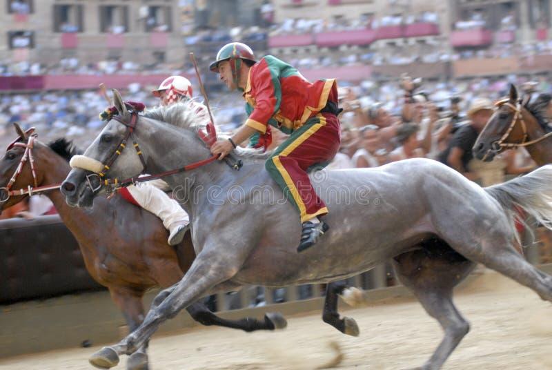 Corsa di cavallo di palio di Siena immagine stock libera da diritti