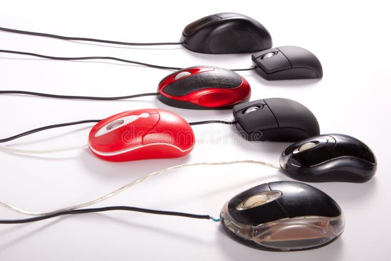 Corsa di Mouses fotografie stock