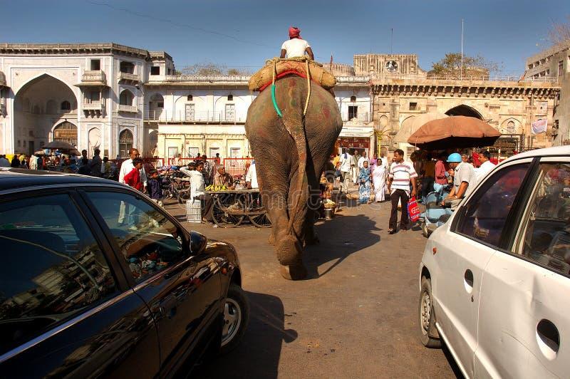 Corsa India immagini stock