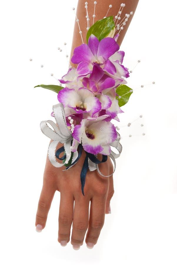 Corsage da orquídea fotos de stock