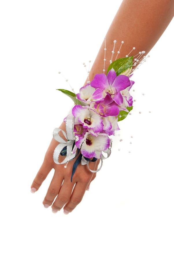 Corsage dell'orchidea immagini stock libere da diritti