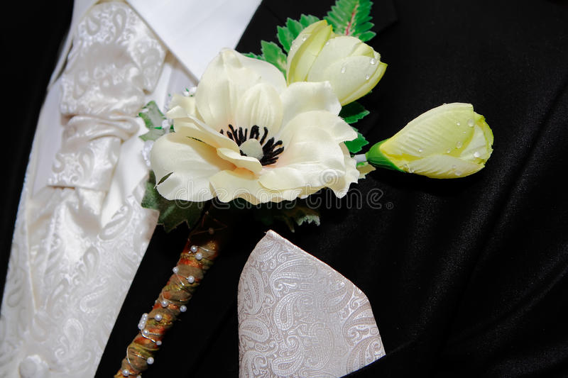corsage fornal s obraz royalty free