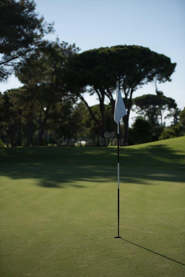 Corse игрока в гольф стоковое изображение rf