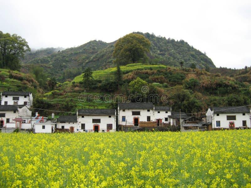 Corse degli uomini del Anhui Mt. Huangshan Qi paesaggio immagini stock