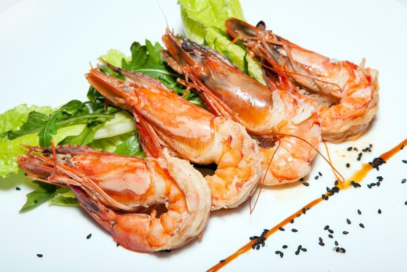Corsi degli aperitivi, delle insalate, prime e seconde, minestra immagini stock libere da diritti