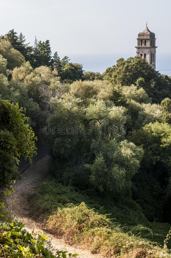 Pino, Haute Corse, Cape Corse, Corsica, Upper Corsica, France, Europe, island. Corsica, 28/08/2017: Mediterranean maquis with view of the bell tower of the stock photo