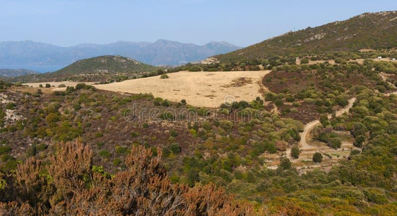 Corsica, wild landscape, Cap Corse, Haute Corse, Upper Corse, France, Europe. Corsica, 30/08/2017: the skyline and wild landscape of the Haute-Corse with royalty free stock photos