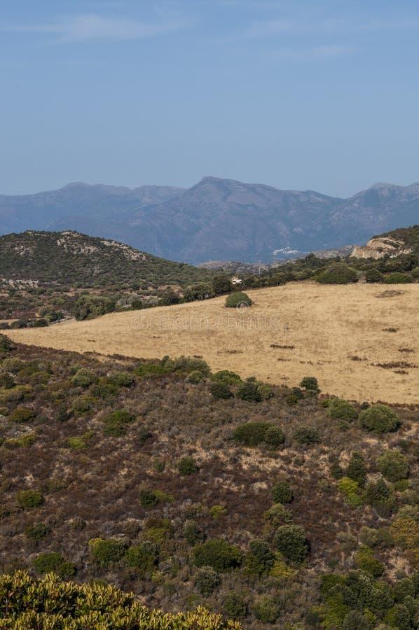 Corsica, wild landscape, Cap Corse, Haute Corse, Upper Corse, France, Europe. Corsica, 30/08/2017: the skyline and wild landscape of the Haute-Corse with royalty free stock image