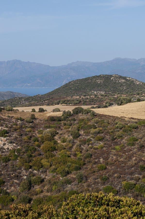Corsica, wild landscape, Cap Corse, Haute Corse, Upper Corse, France, Europe. Corsica, 30/08/2017: the skyline and wild landscape of the Haute-Corse with stock images