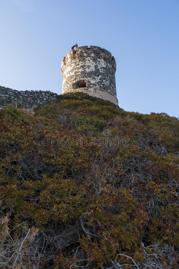 Iles Sanguinaires, Gulf of Ajaccio, Corsica, Corse, France, Europe, island. Corsica, 01/09/2017: sunset on La Parata Tower, a ruined Genoese tower built in 1608 stock image