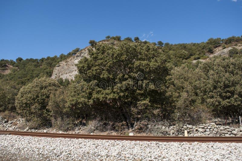 Corsica, train tracks, Haute Corse, Upper Corse, France, Europe, Haut Asco, Asco Valley, High Center of Corsica, island. Corsica, 31/08/2017: the wild landscape royalty free stock image