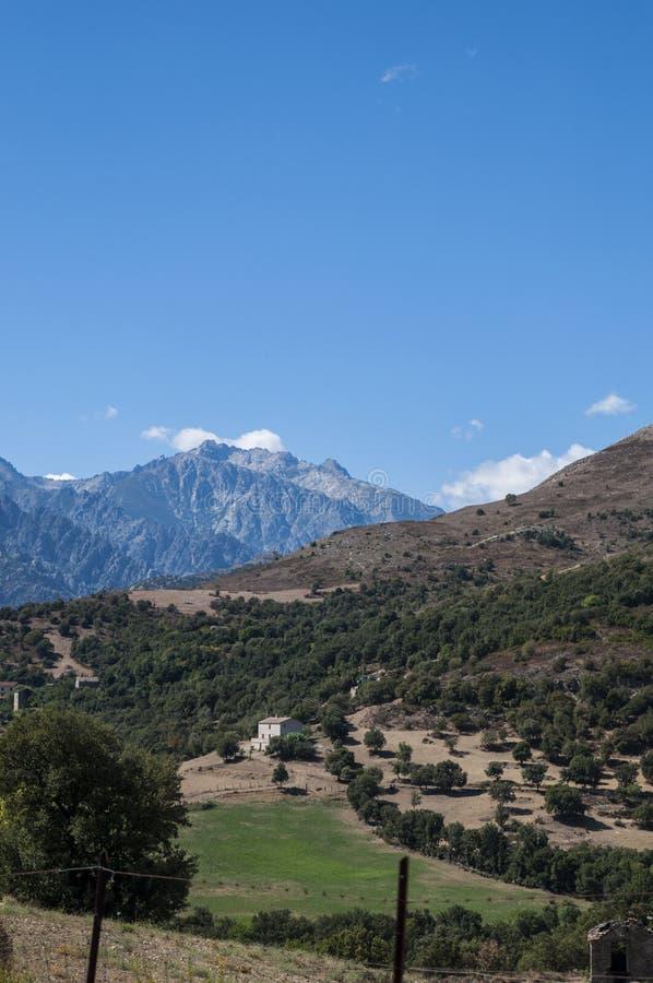 Corsica, wild landscape, Haute Corse, Upper Corse, France, Europe, Haut Asco, Asco Valley, High Center of Corsica, island. Corsica, 31/08/2017: the wild stock image