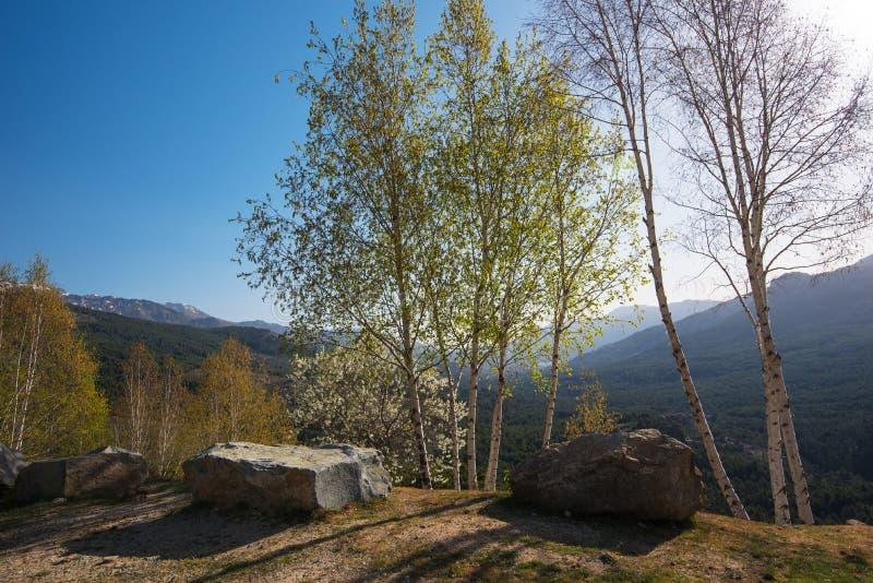 Corsican high mountains of Niolu in springtime stock photos