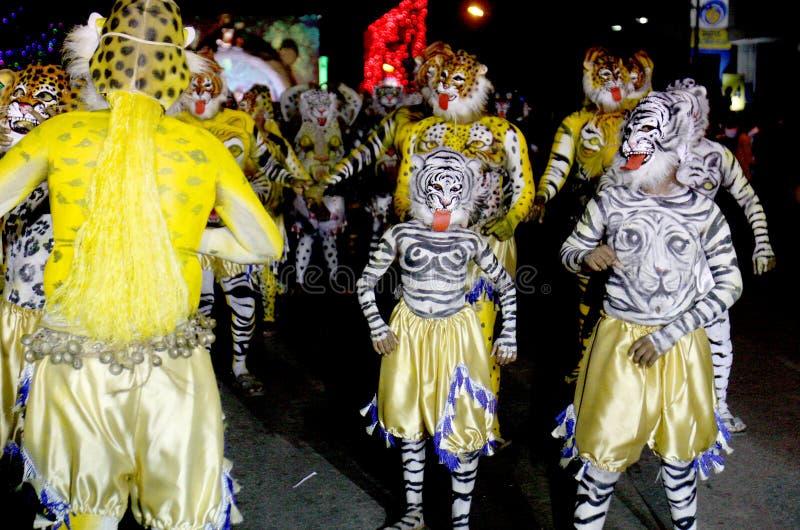 Cortège de danse de tigre image libre de droits