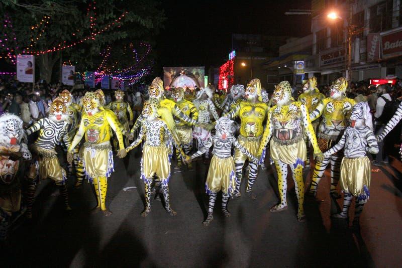 Cortège de danse de tigre photos stock