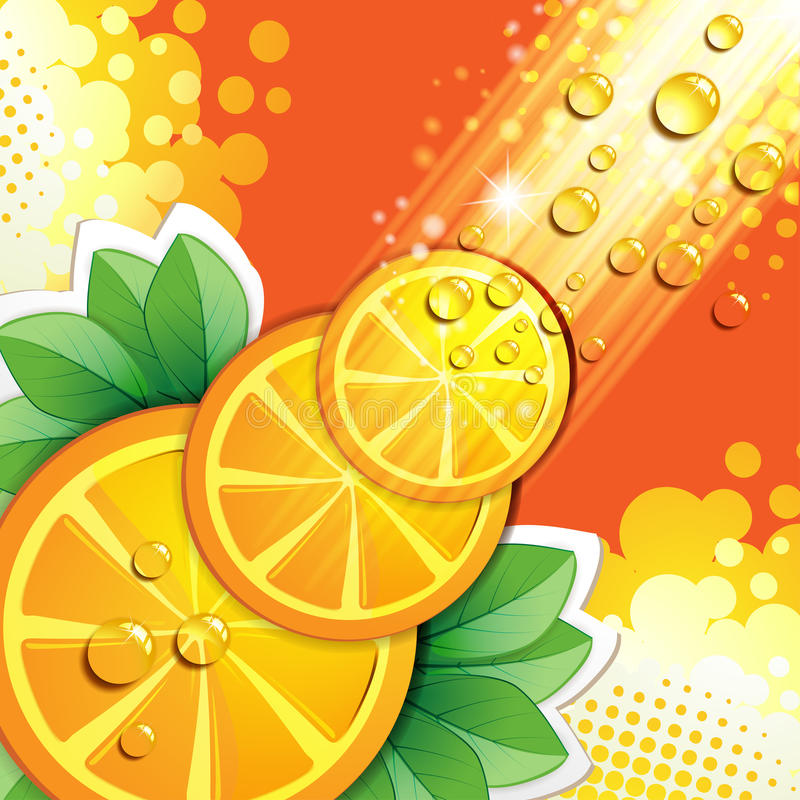 Corta a laranja ilustração do vetor
