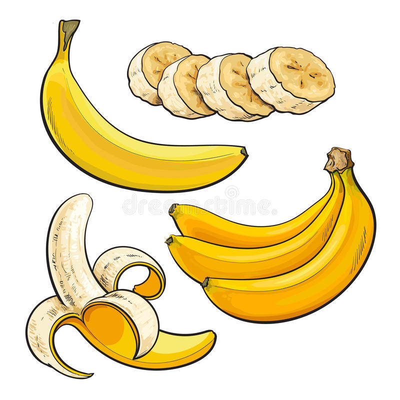 Cortado, descascado, singl e grupo da banana três madura ilustração do vetor