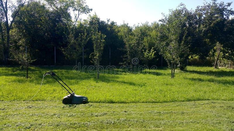 Cortador de grama em um jardim fotografia de stock