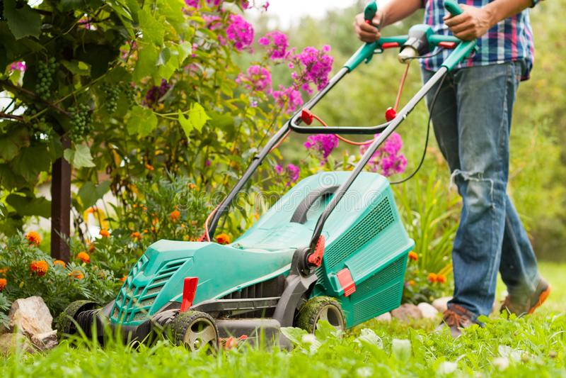 Cortador de grama de Mow Grass With do jardineiro no jardim no verão fotografia de stock