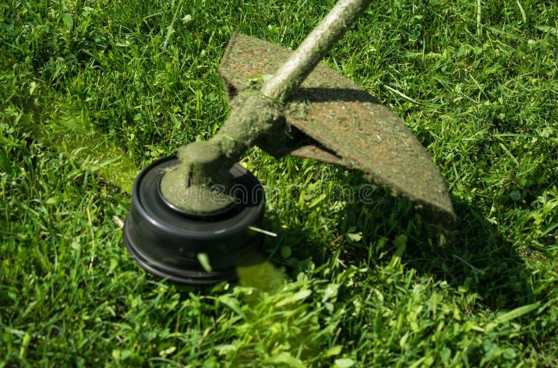 Cortando o gramado com a segadeira mecânica fotografia de stock