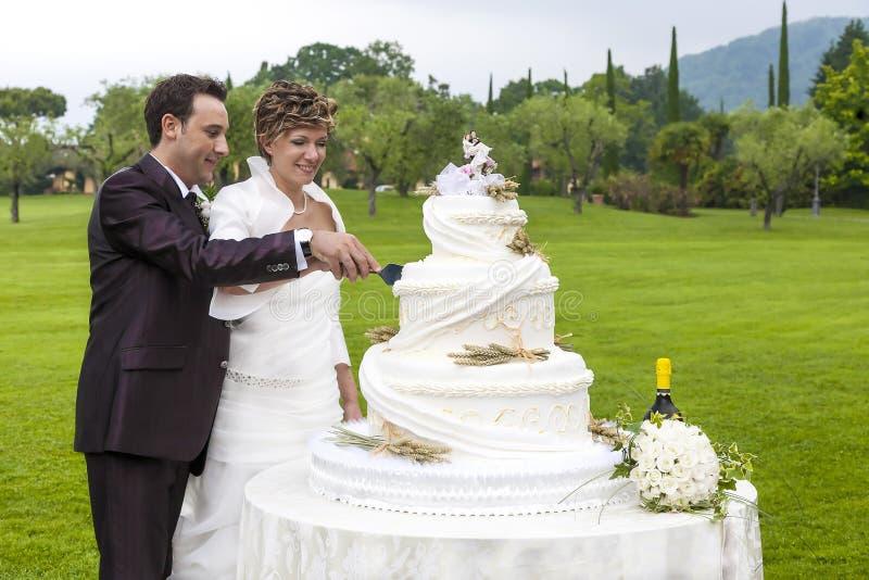 Cortando um bolo de casamento fotografia de stock royalty free