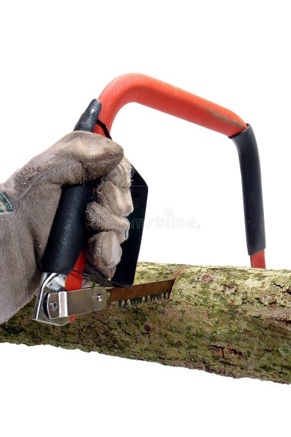 Cortando um registro de madeira com um corte viu imagem de stock