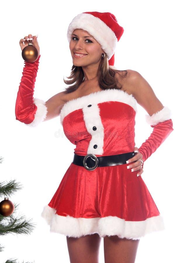 Cortar el árbol de navidad foto de archivo