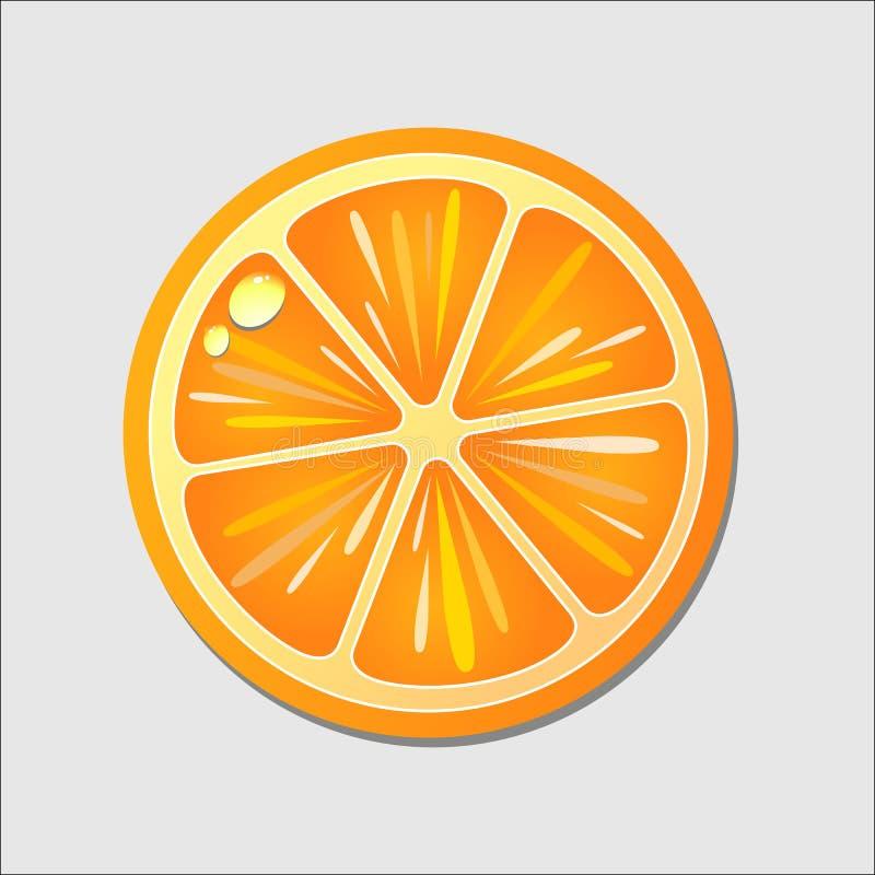Corte anaranjado adentro a medias Fruta cítrica aislada en el fondo blanco stock de ilustración