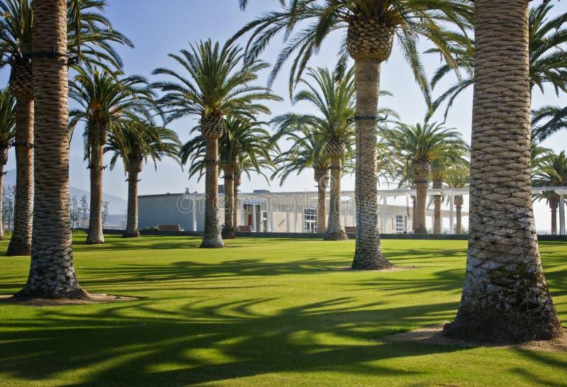 Corte da palma, grande parque do Condado de Orange, Califórnia imagens de stock royalty free