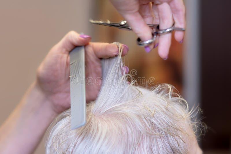 Corte de cabelo para as pessoas idosas O processo de cortar o cabelo da avó na barbearia imagens de stock royalty free