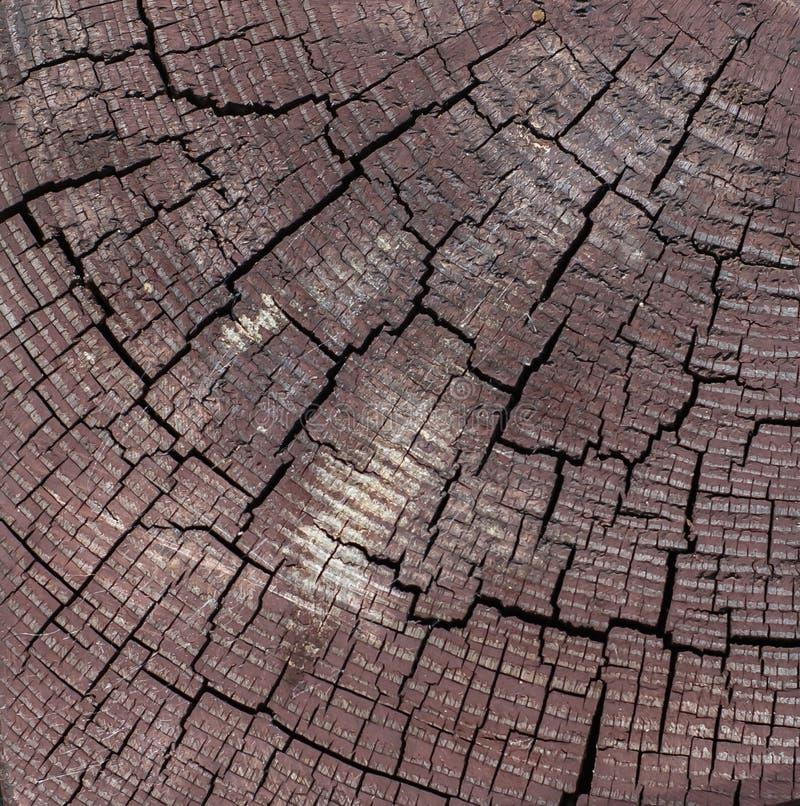 Corte de madera de la clavija de Brown del cuadrado con las grietas negras fotos de archivo