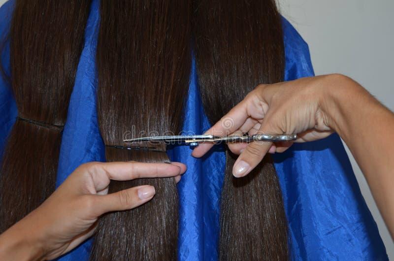 Corte de pelo en el pelo realmente largo foto de archivo libre de regalías