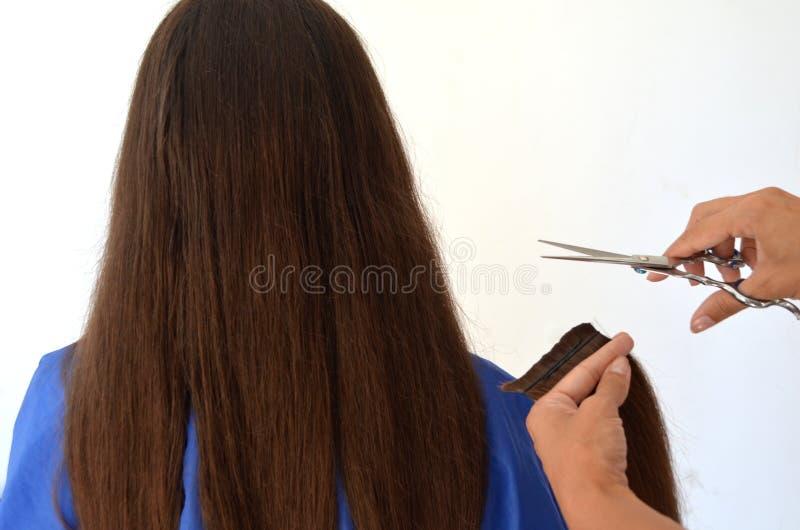 Corte de pelo en el pelo realmente largo fotografía de archivo libre de regalías