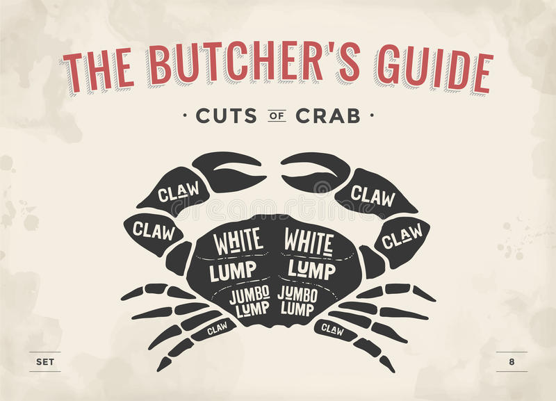 Corte del sistema de la carne Diagrama y esquema - cangrejo del carnicero del cartel ilustración del vector