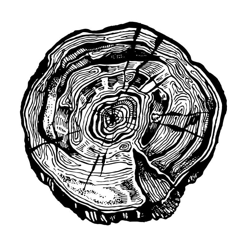Corte dibujado mano de madera ilustración del vector