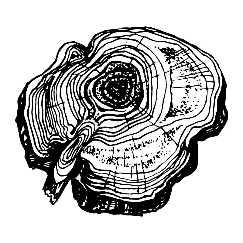 Corte dibujado mano de madera stock de ilustración
